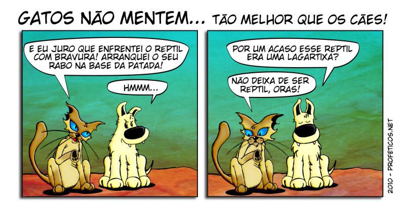 2010-04-14-63-gatosnaomentem