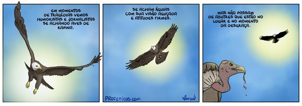 Aves tragédias desastres acidentes humoristas jornalistas