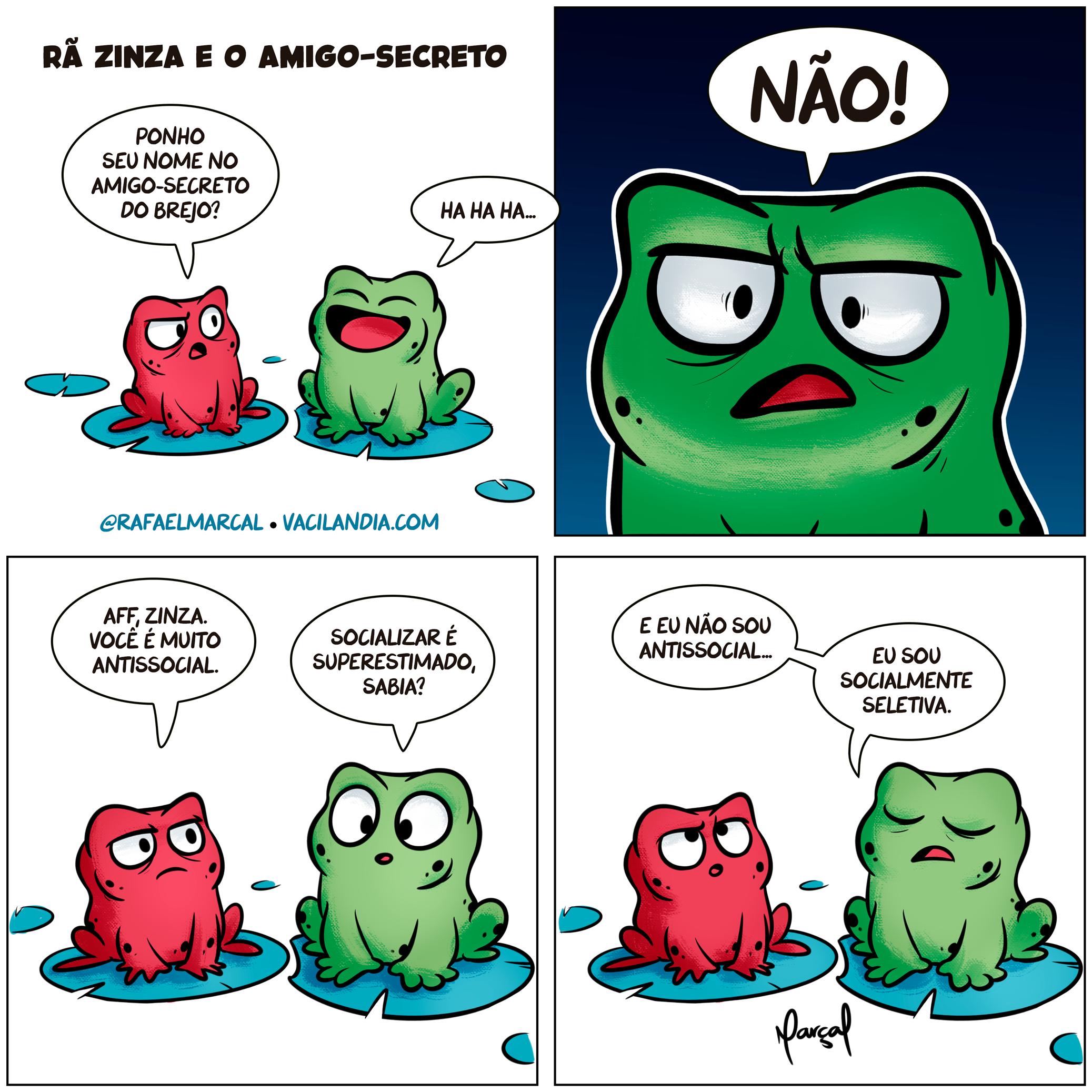 Rã Zinza e o Amigo-Secreto | webcomic, tirinhas, tirinha, social, ranzinza, rã zinza, quadrinhos, memes, humor, comédia, antissocial, amigo secreto